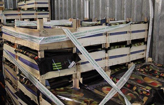 Практически 7,5 тонн санкционных овощей ифруктов уничтожено вСвердловской области